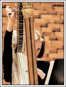 nr 13 Steen Meyer - Harpestemning