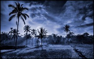 nr 7 Henrik Boserup -Bali moon