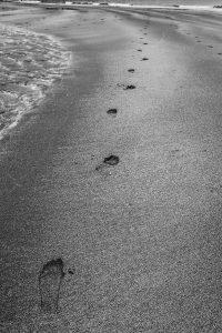 nr 12 Fine Holten - Fodspor i Sand