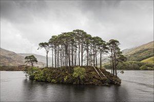 nr 1 - Ove Lyngsie - Skotland