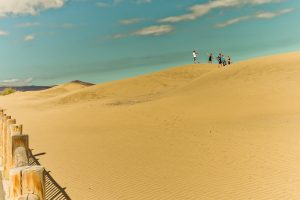 nr 12 Anders Buch Kristensen - på kanten af ørkenen