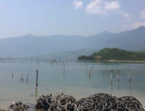 nr 20 Lene Kildegaard - Landskab med fiskeri syd Vitnam