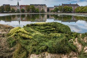 nr 2-Fine Holten-Den Grønne Sortedams Sø