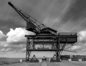 nr 24-Dorthe Dalby Nielsen-The Crane