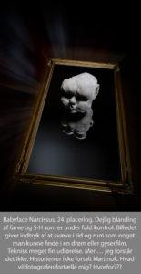 nr 24 Philip C Jørgensen-Babyface Narcissus