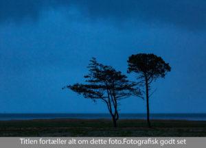 nr 12-Nils Hastrup-Den blå time