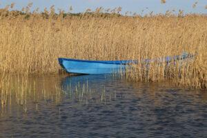 nr 14 Lisbeth Larsen-Den blå båd