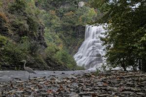 nr 14 Lisbeth Larsen-Ithaca Falls